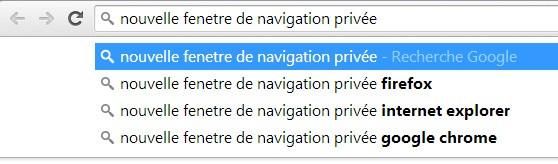 mon adresse ip navigation privée