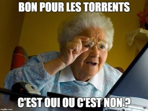 telecharger torrent anonymement