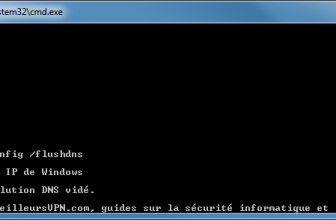 Comment vider le cache DNS sur Windows et Mac